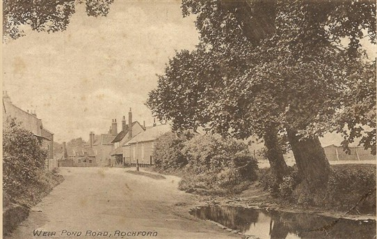 Photo: Illustrative image for the 'Weir Pond Rd' page